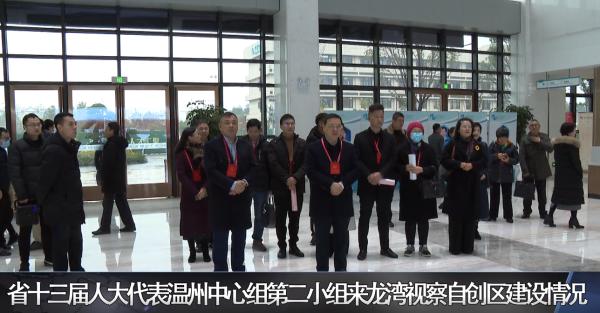省十三届人大代表温州中心组第二小组来龙湾视察自创区建设情况