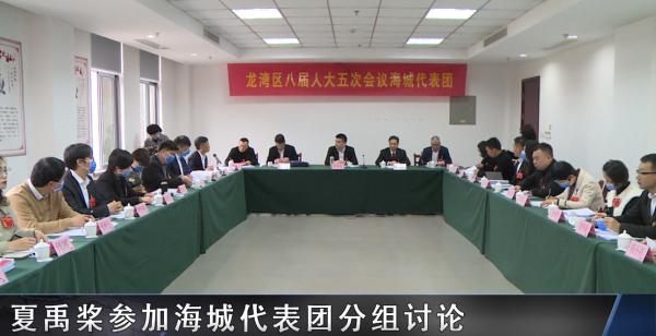 夏禹桨参加海城代表团分组讨论